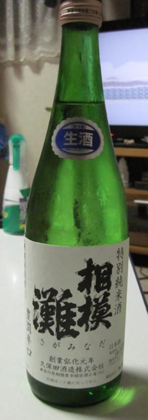 Sagaminadabin01
