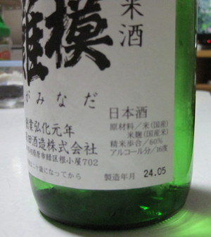 Sagaminadabin03