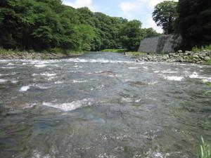 Sajikido02