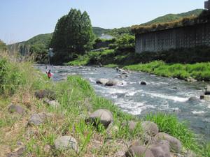 Sagasawa01