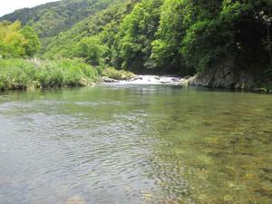 Sagasawa04