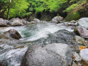 Hikaributi2